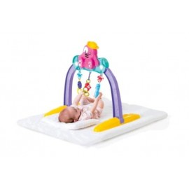 BABY GYM PET 909